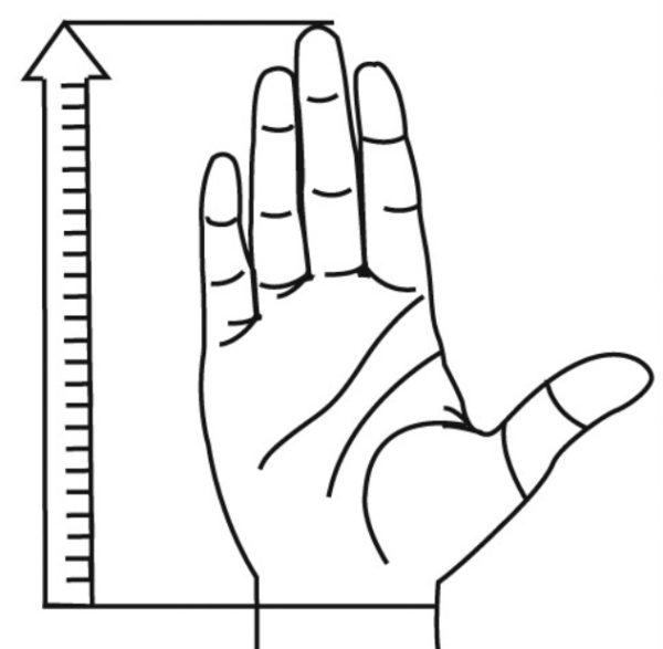 kämmenen pituus mitta